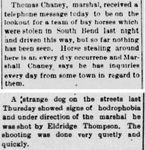 Town marshal clippings - 1901