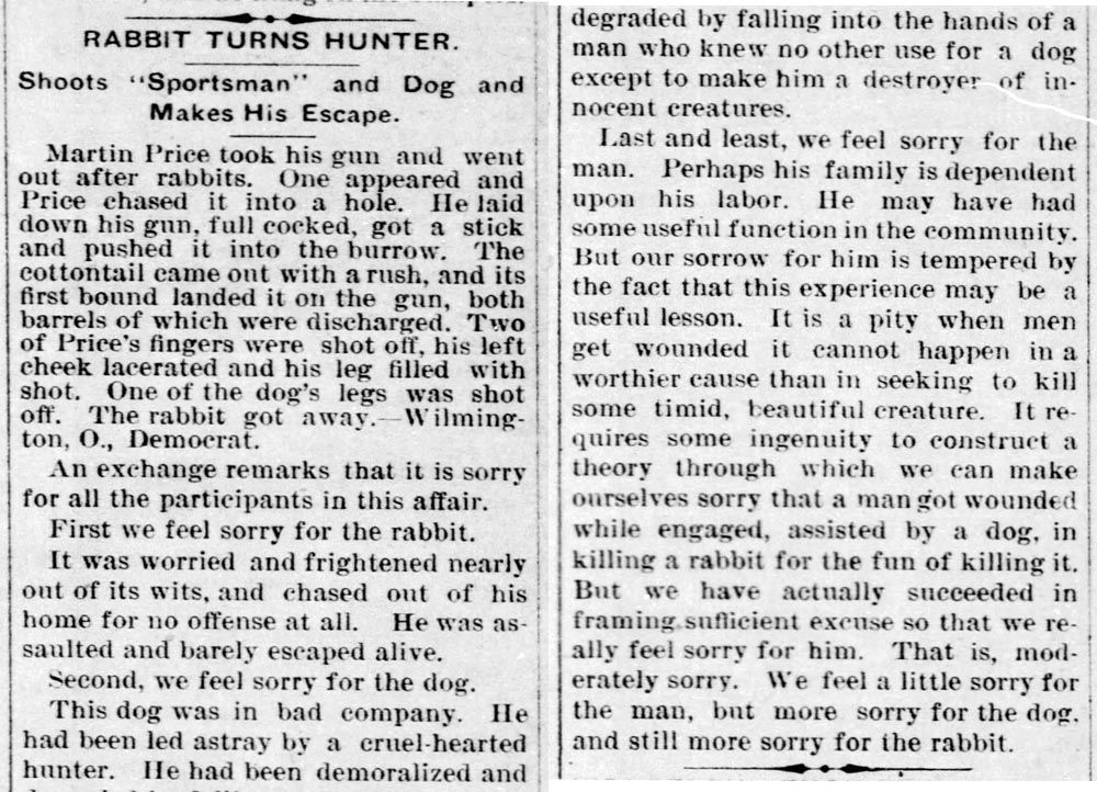Rabbit turns hunter - Enquirer - Mar_17__1904_